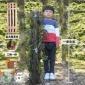 江楠枫基地直销 铁皮石斛苗超大树桩1米高可吃可种可做鲜条